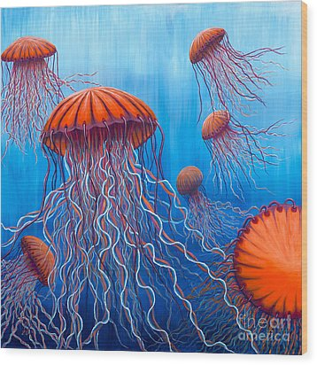 Ally's Orange Jellies Wood Print by Rebecca Parker