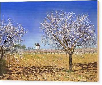 Almendros Wood Print by Margaret Merry