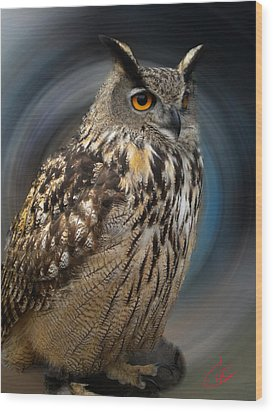 Almeria Wise Owl Living In Spain  Wood Print