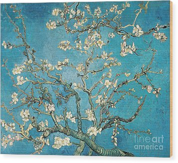 Almond Branches In Bloom Wood Print by Vincent van Gogh