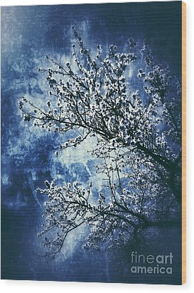 Almond Tree #2 Wood Print by Angela Bruno