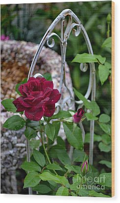 Almost A Perfect Rose Wood Print by Eva Thomas
