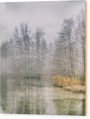 Wood Print featuring the photograph Almost Frozen Almost Winter by Maciej Markiewicz