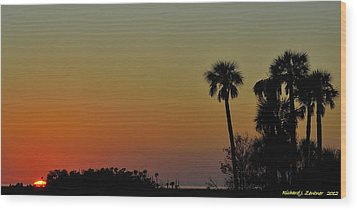 Wood Print featuring the photograph Almost Gone by Richard Zentner