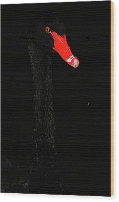 Almost Hidden  Wood Print by Karol Livote