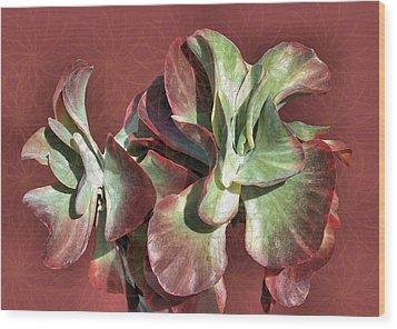 Aloe Design Wood Print by Rosalie Scanlon