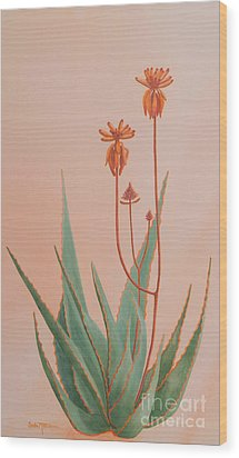 Aloe Family Wood Print