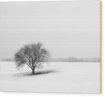 Alone Wood Print by Don Spenner