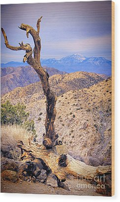 Alone In The Desert Wood Print by Mariola Bitner