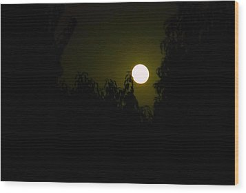 Alone In The Night Wood Print by Tamara Bettencourt
