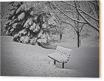 Wood Print featuring the photograph Alone In The Park.... by Deborah Klubertanz
