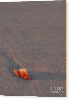 Alone Wood Print by Liz Masoner