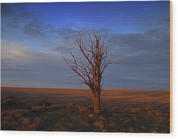 Wood Print featuring the photograph Alone Yet Not Alone by Lynn Hopwood