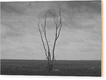 Wood Print featuring the photograph Alone  by Ricky L Jones