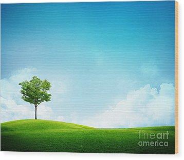 Alone Tree Wood Print by Boon Mee