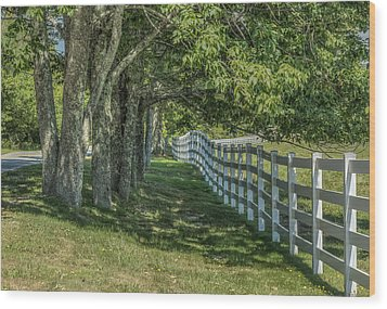 Wood Print featuring the photograph Along A Country Road by Jane Luxton