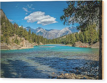 Along The Bow River Wood Print