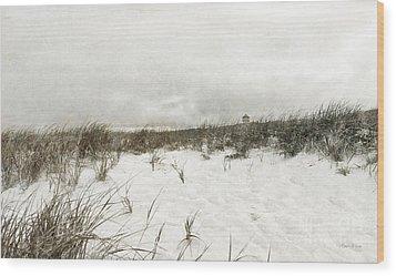 Along The Cape Cod National Seashore Wood Print by Michelle Wiarda