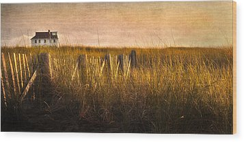 Along The Fence Wood Print by Bill Wakeley