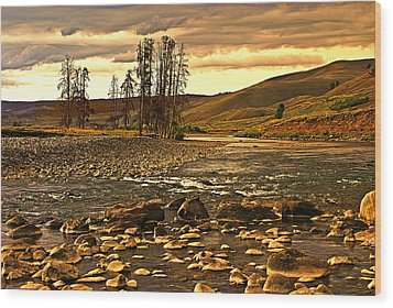 Along The Larmar River Wood Print by Marty Koch
