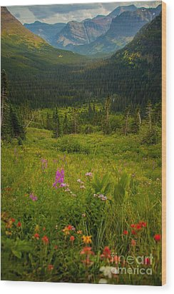 Along The Path To Iceburg Lake 17 Wood Print by Natural Focal Point Photography