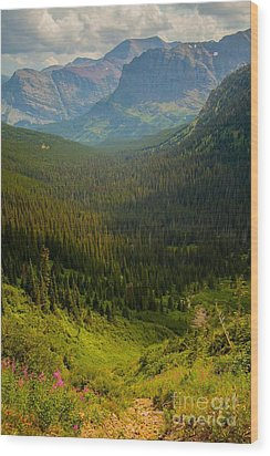 Along The Path To Iceburg Lake 19 Wood Print by Natural Focal Point Photography