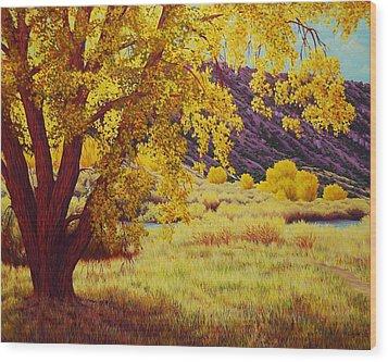 Along The Rio Grande Wood Print