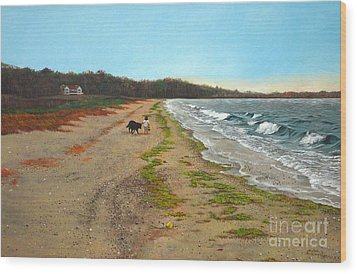 Along The Shore In Hyde Hole Beach Rhode Island Wood Print by Christopher Shellhammer