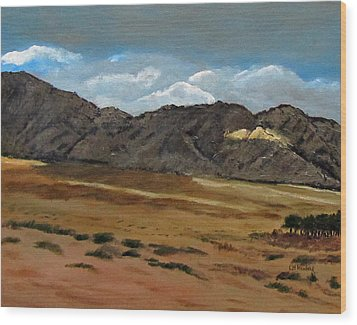 Along The Way To Eilat Wood Print by Linda Feinberg