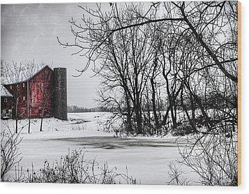 Alpine Barn Michigan Wood Print by Evie Carrier