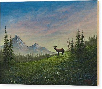 Alpine Beauty Wood Print by C Steele