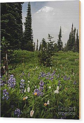 Alpine Beauty Wood Print