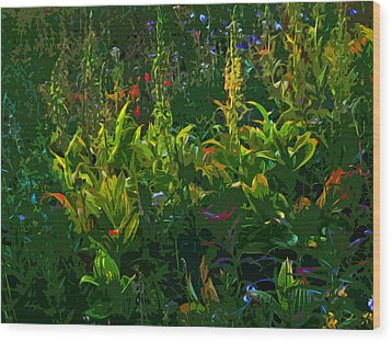 Alpine Flowers Wood Print by Anne Havard