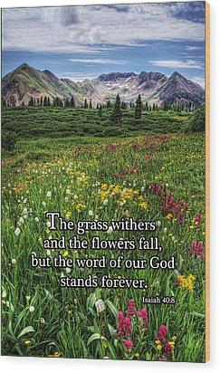 Alpine Meadow Wood Print by Priscilla Burgers