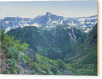 Wood Print featuring the photograph Alpine Vista Near Durango by Arthaven Studios