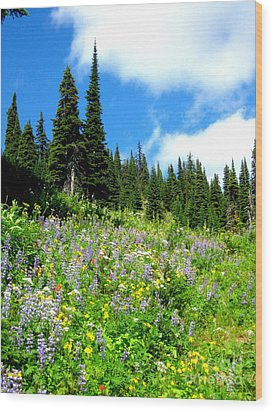 Wood Print featuring the photograph Alpine Walk by Kathy Bassett