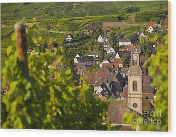 Alsace Morning Wood Print by Brian Jannsen