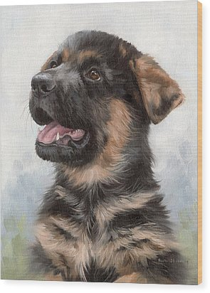 Alsatian Puppy Painting Wood Print by Rachel Stribbling