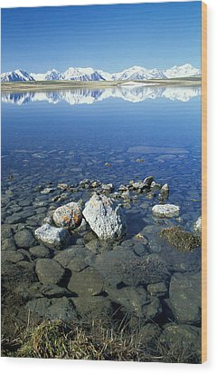 Altai Wood Print by Anonymous