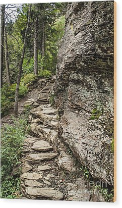 Alum Cave Trail Wood Print by Debbie Green