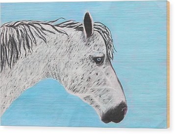 Alvaro Stallion Wood Print