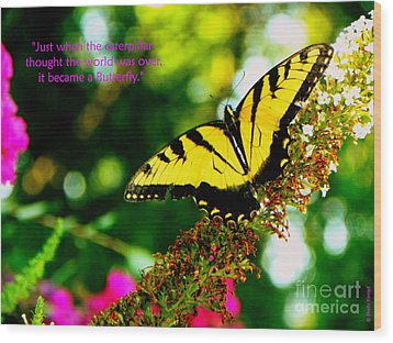 Always Hope - Butterfly Wood Print by Shelia Kempf