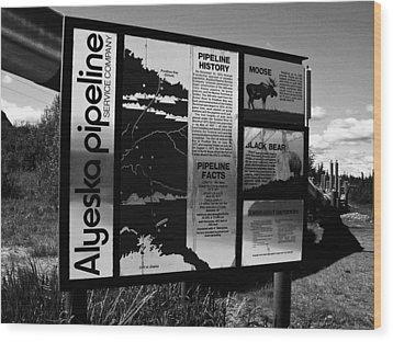 Alyeska Pipeline Wood Print by Juergen Weiss