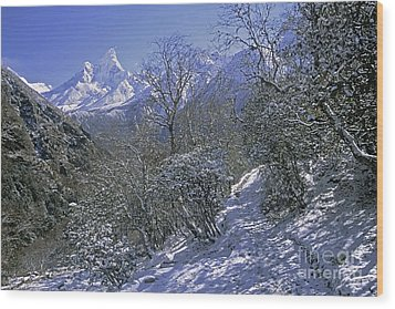 Wood Print featuring the photograph Ama Dablam In Winter by Rudi Prott