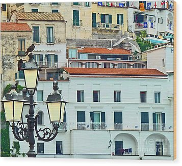 Wood Print featuring the photograph Amalfi Birds And Lamps by Cheryl Del Toro