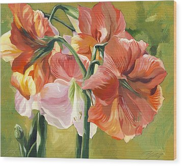 Amaryllis In Spring Wood Print by Alfred Ng