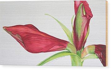 Amaryllis Wood Print by Kyong Burke