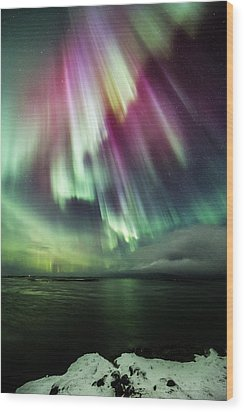 Amazing Auroras Wood Print