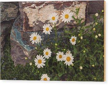 Amazing Daisies Wood Print by Omaste Witkowski