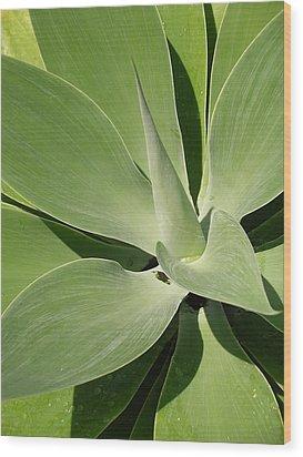 Amazing Natural Art Wood Print by Karen Nicholson